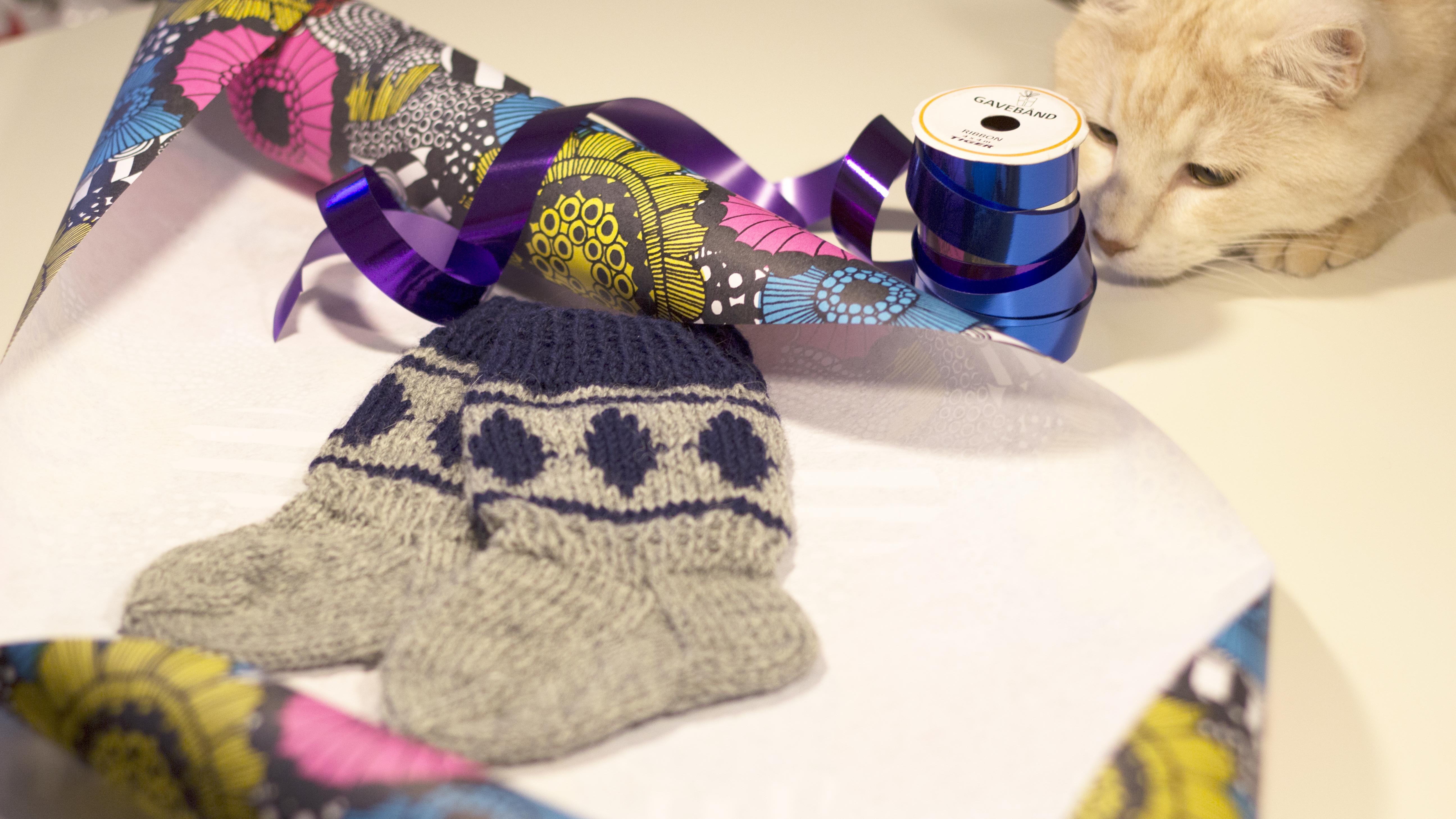 Jussi-sukat ja kissa